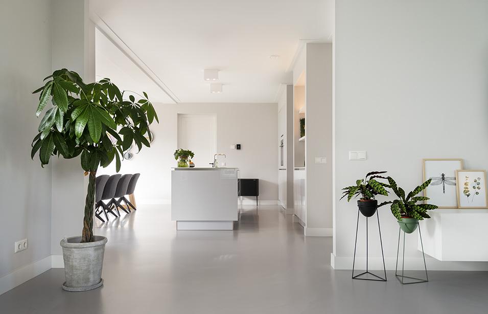 EPI Superbase Grey Light Kitchen plants