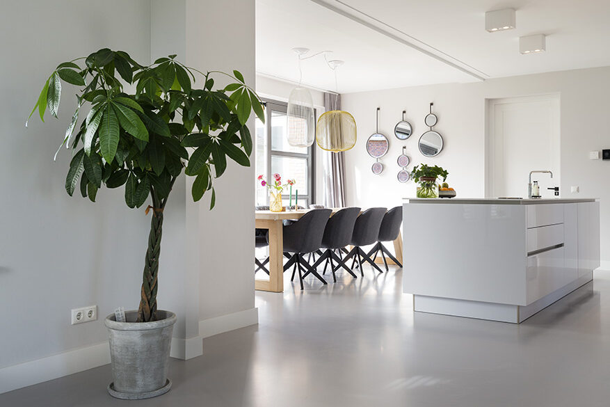 EPI Superbase Grey Light Kitchen plant